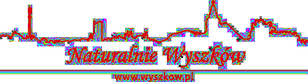 wyszkow.pl